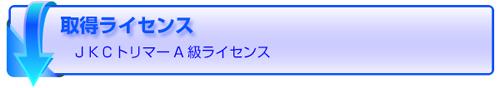 愛犬トリマー科/大学専科/ラインセンス